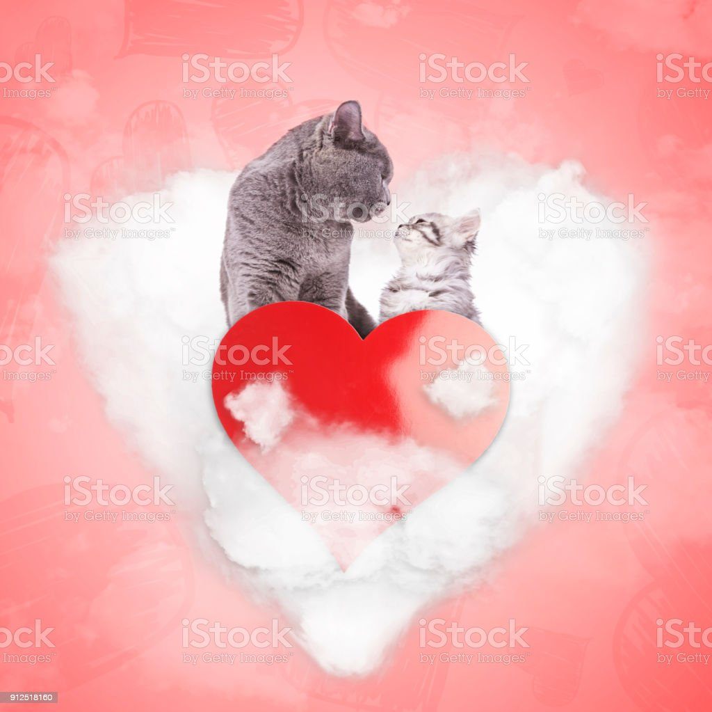 romantic couple of cats on a love cloud, valentine\'s day concept