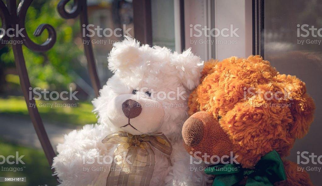 Romantic couple of Teddy bears Lizenzfreies stock-foto