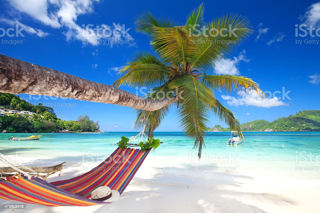Romantic cozy hammock stock photo