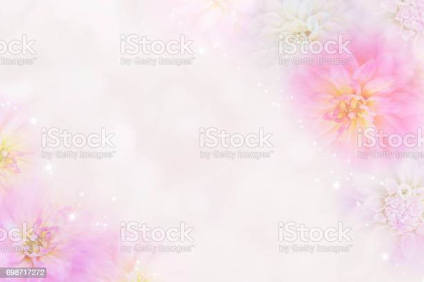 Romantic dahlia flower background in soft tone picture id698717272?b=1&k=6&m=698717272&s=612x612&h=e3nrctqsaso5nc1x7zxikpa6bpzaye8 1kmzyineyg8=