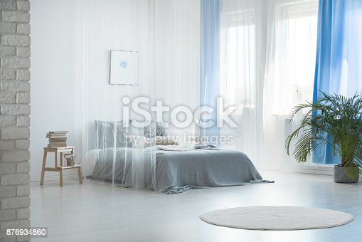 istock Romantic design of spacious bedroom 876934860