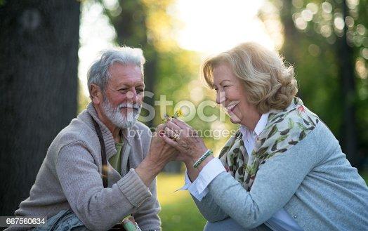 510491454istockphoto Romantic happy senior couple in park 667560634