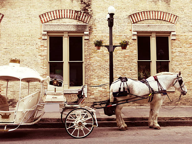 Romantic Horse and Carriage and Brick Building and Lamppost stock photo