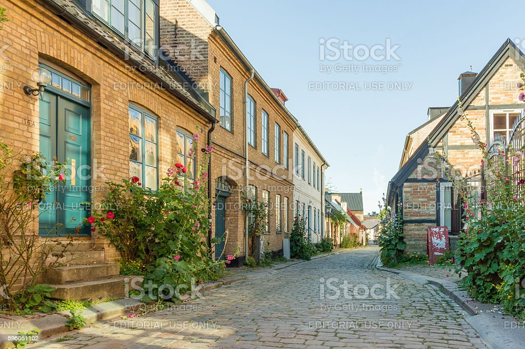 Romantic houses with roses in an narrow alley stock photo