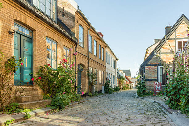 romantic houses with roses in an narrow alley - lund stock photos and pictures