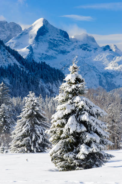 romantische Landschaft im Winter in Bayern, Deutschland – Foto