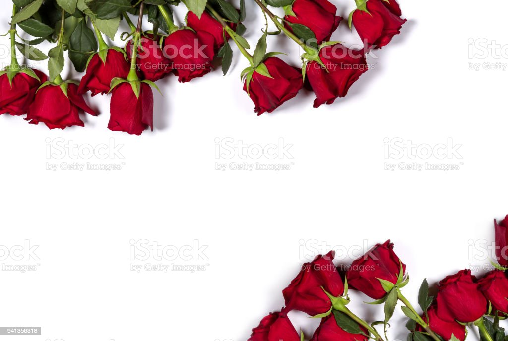 Romantic mockup. Floral frame made of beautiful large red roses on white background. Space for your text. Top view. Flat lay. stock photo