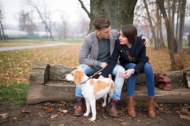 romantische momente. - hundeplätze stock-fotos und bilder