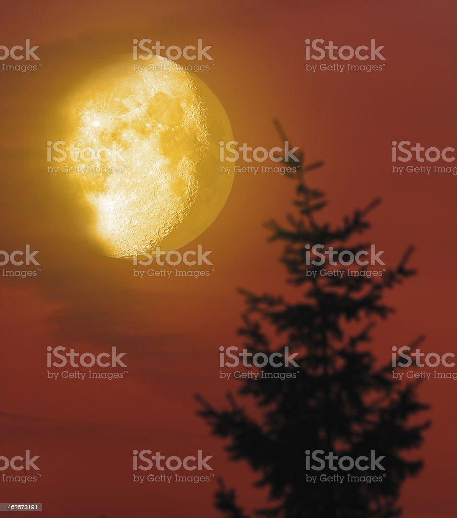Romantic Moon royalty-free stock photo