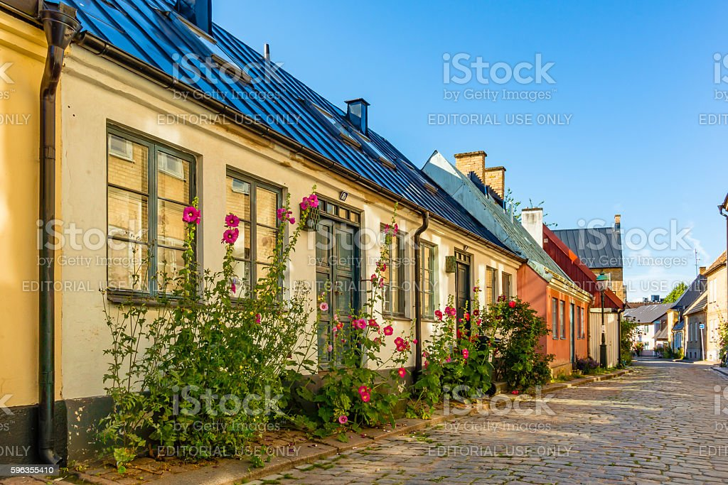 Romantic old house with hollyhocks royalty-free stock photo