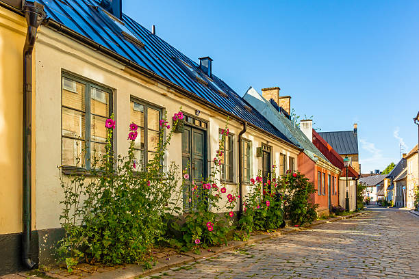 romantic old house with hollyhocks - lund stock photos and pictures