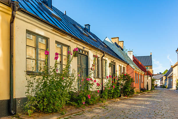 romantic old houses with hollyhocks - lund stock photos and pictures