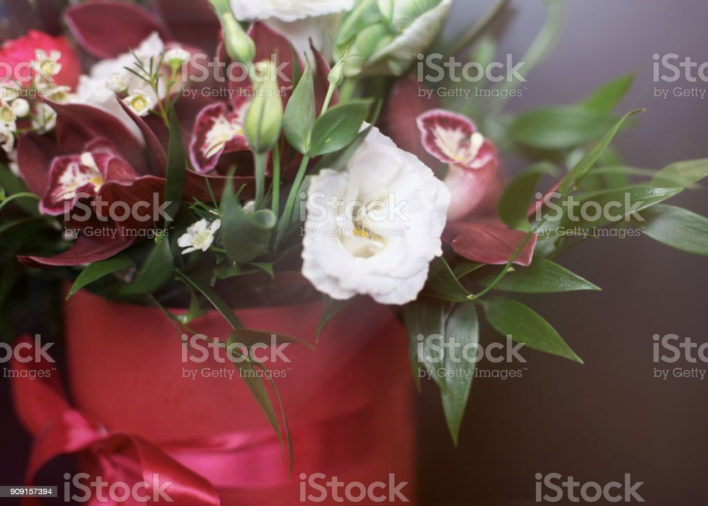 Romantic orchids and roses in a red gift box on a black background with sunlight stock photo