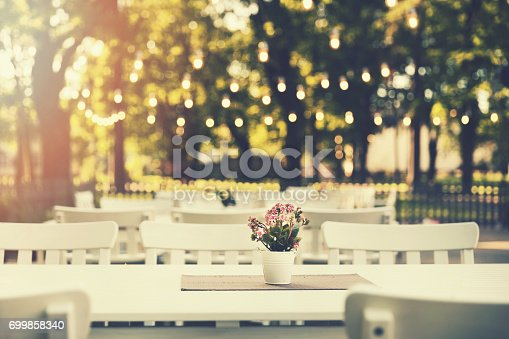 istock romantic outdoor restaurant in park with string lights at sunset 699858340