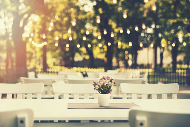 romântico restaurante ao ar livre no parque com luzes da corda ao pôr do sol - festa no jardim - fotografias e filmes do acervo