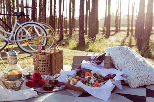 romantisches picknick eingerichtet mit gemischten essen platte und win - romantisches picknick stock-fotos und bilder