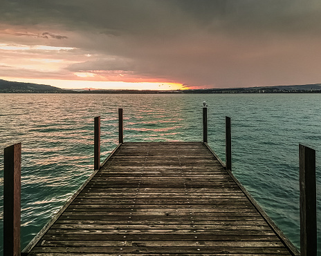 Romantic pink summer clear blue water lake sunset wooden pathway, bird on pole closeup with colorful cloud background