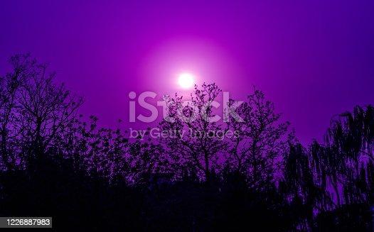 Romantic purple sky