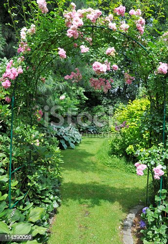 Garden with rose arch,path and hostas.