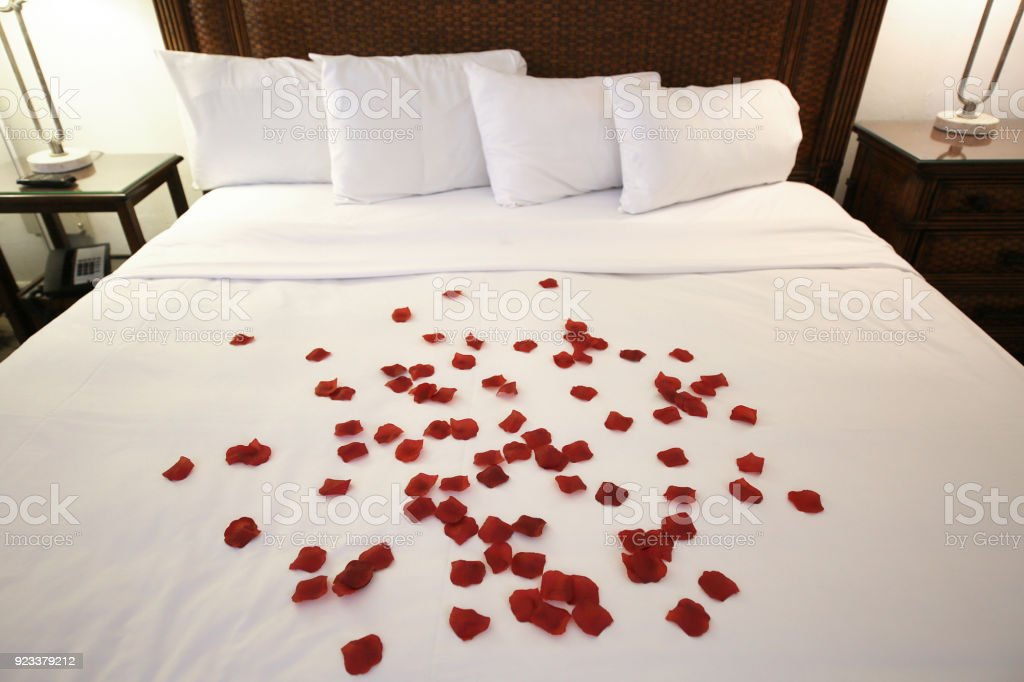 Romantic Rose Petals On Bed Stock Photo Download Image Now Istock