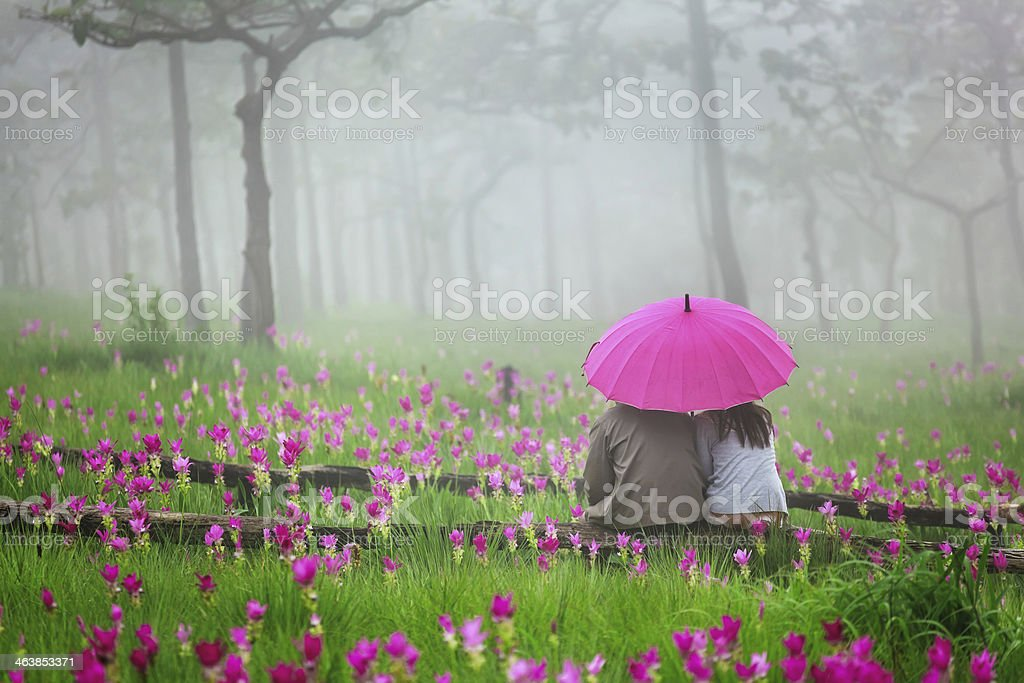 romantic scene of love royalty-free stock photo