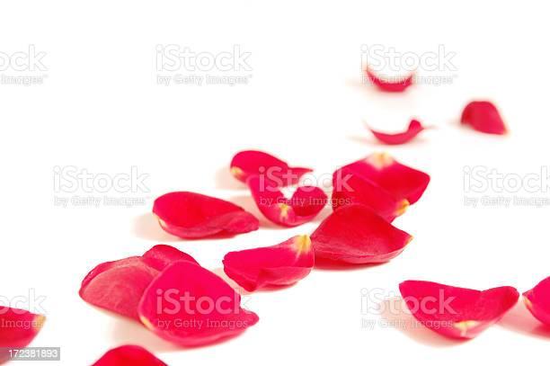 Romantic setting picture id172381893?b=1&k=6&m=172381893&s=612x612&h=lyiqcu26znnnqkfmotxjes8zeq4pkniyquy5ap74jno=