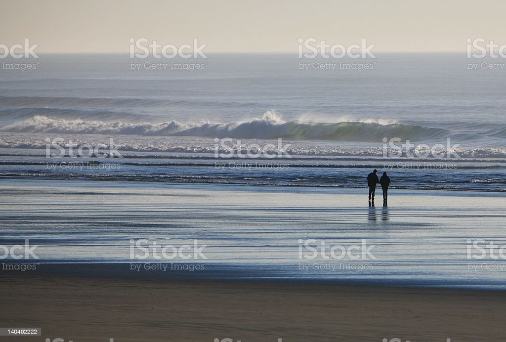 Romantic Stroll along the shore royalty-free stock photo