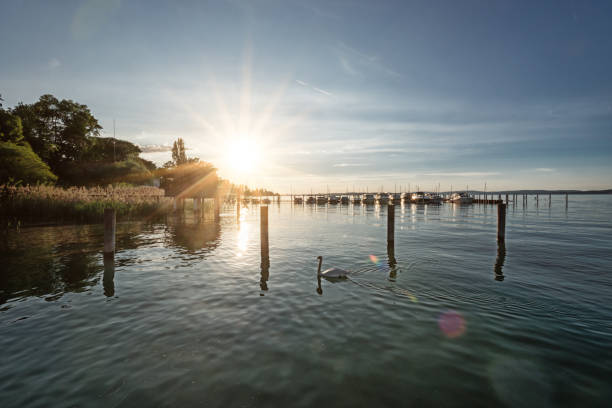 Romantic sunset over Lake Constance near Altnau in Switzerland sea house with boats anchored on a summer evening in Altnau on Lake Constance in Switzerland with a breathtaking sunset Bodensee stock pictures, royalty-free photos & images