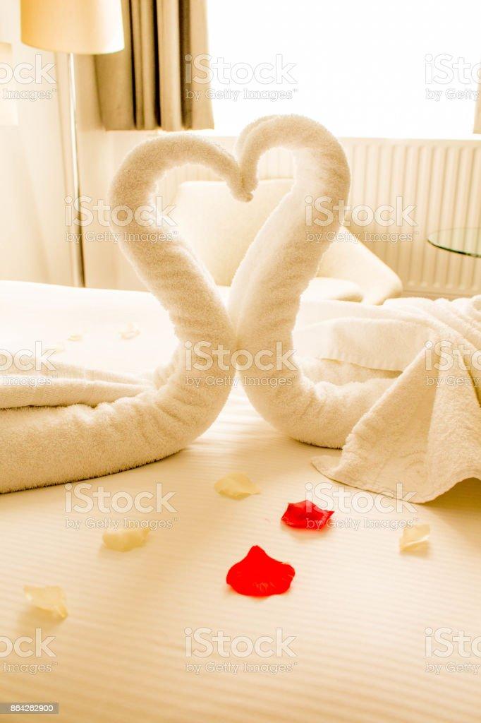 Romantic Swans royalty-free stock photo