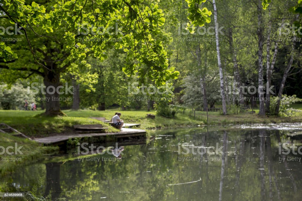 Romantic view of the pond in the summer royalty-free stock photo