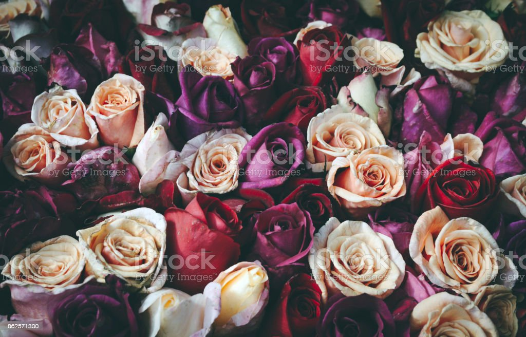 Romantic vintage bouquet of roses. stock photo