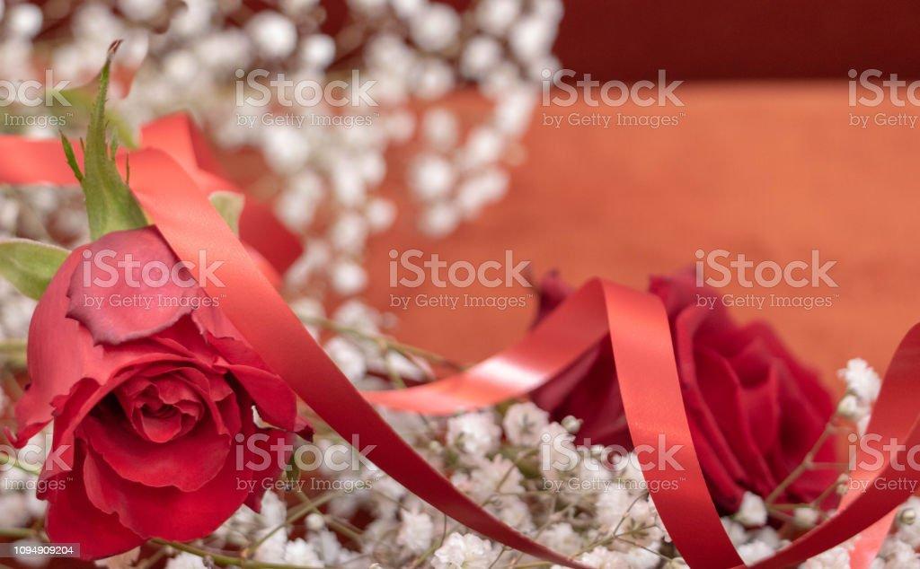 Romantisme Passion Rose Rouge Et Fleurs Blanches En Cadeau Stock