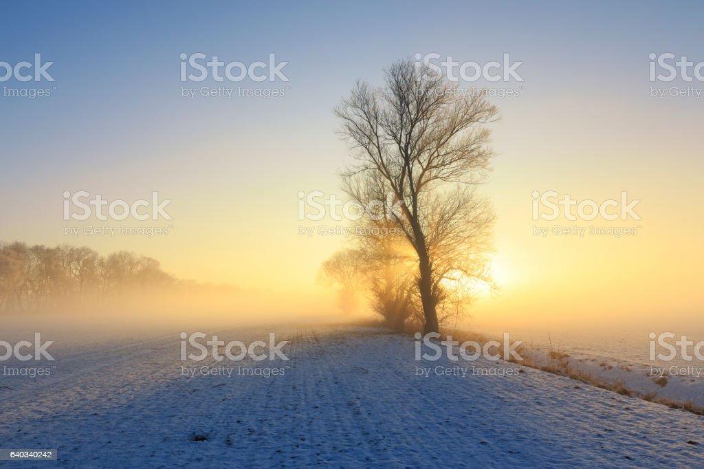 romantischer Wintermorgen stock photo