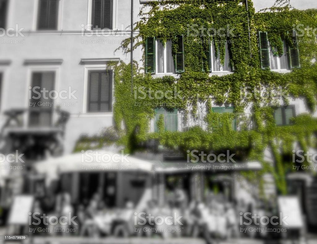 Terraza Cafetería De Roma Con Vides Verdes Foto De Stock Y