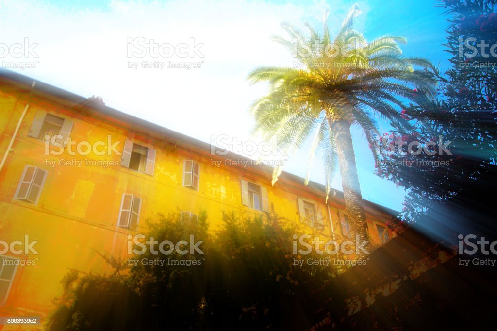 Rome, Italy: Palm Tree and Yellow Building with Sunbeam stock photo