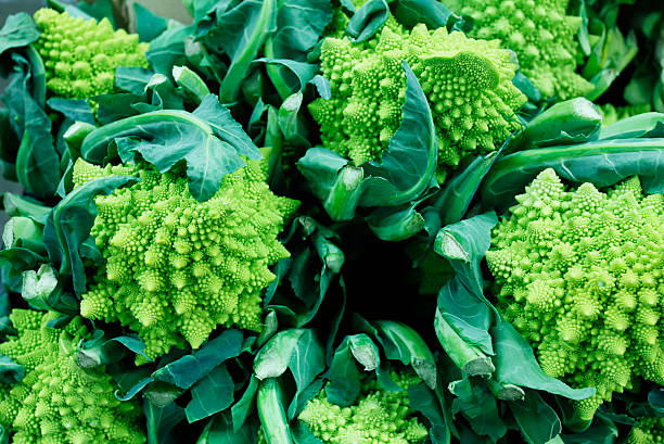 Romensco Broccoli stock photo