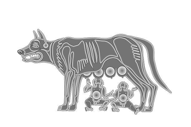 Remus and Romulus – Foto