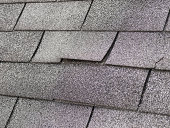 Roof shingle rising due to damaged roof