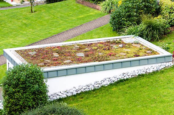 dachgarten, grünes dach - dachgarten stock-fotos und bilder