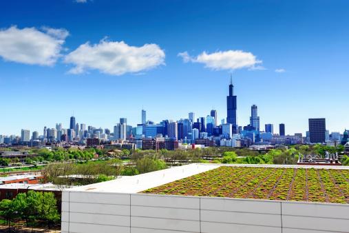 Dachgarten In Chicago Stockfoto und mehr Bilder von Architektur