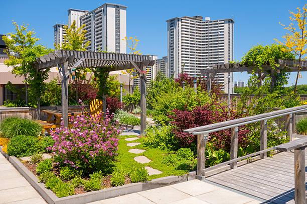 """""""roof garden'an der spitze des apartment-gebäudes"""" - dachgarten stock-fotos und bilder"""