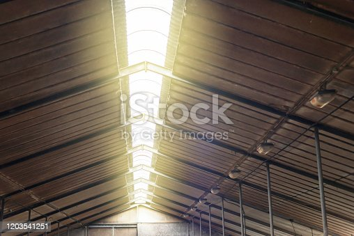 Roof light in old cattle shed.