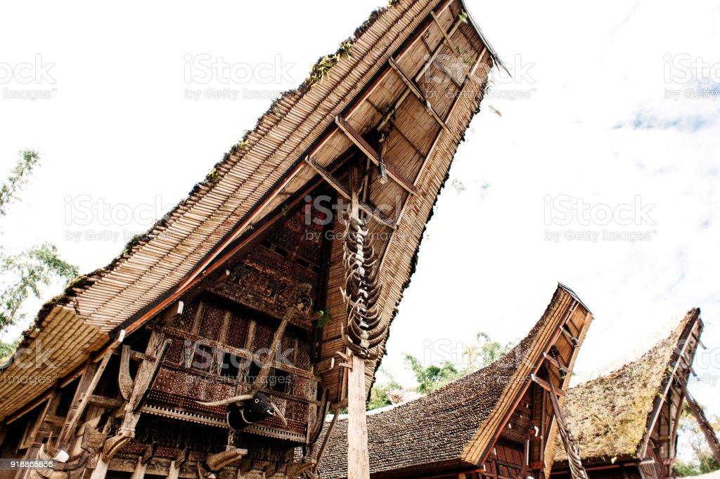 Roof of tongkonan with horns of buffaloes, traditional torajan buildings. Ethnic village Kete Kesu in Tana Toraja, Rantepao, Sulawesi, Indonesia. Wide angle stock photo