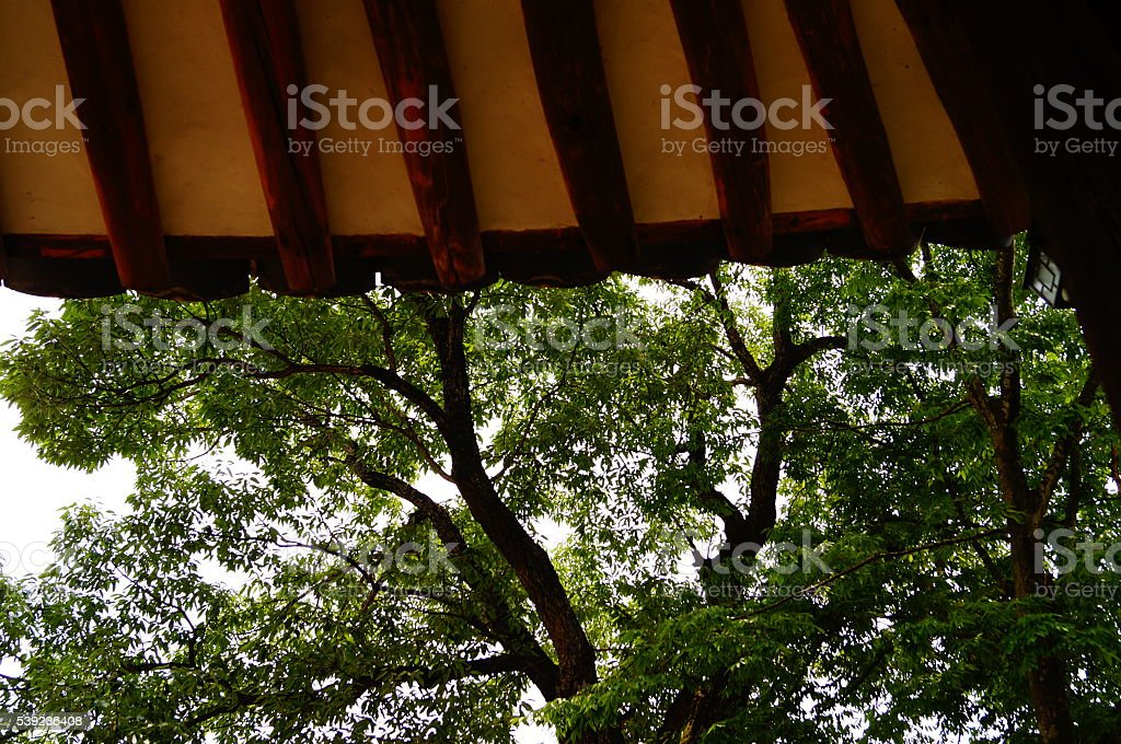roof royalty-free stock photo