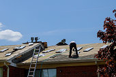 istock Roof repair, worker with replacing gray tiles shingles on house 1226676961