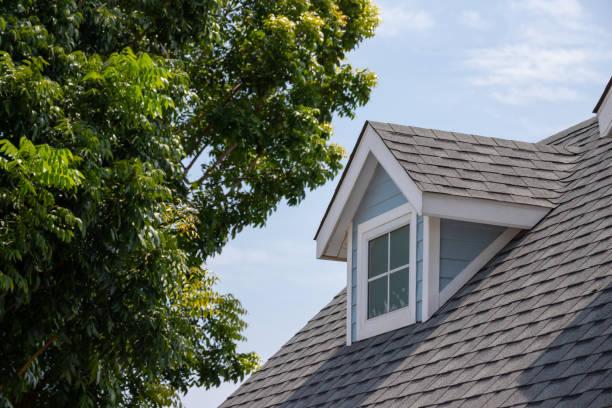 dachschindeln mit garret haus auf der oberseite des hauses unter vielen bäumen. dunkle asphaltfliesen auf dem dachhintergrund - gürtelrose stock-fotos und bilder