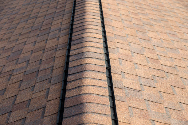 Roof Shingles with Ridge Vent stock photo