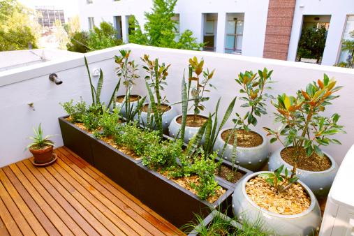Terrasse Auf Dem Dach Stockfoto und mehr Bilder von Balkon