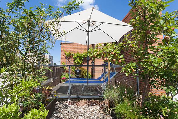 roof terrace with apples hanging on a tree - sonnenschirm terrasse stock-fotos und bilder