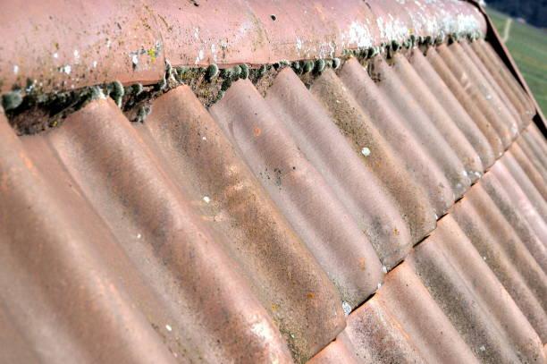 Roof tile with first of a device hut UV-Filter, Firstziegel, Steildach, Ton-Dachziegel, Schrägdach, Geräteschuppen, fluchtpunktperspektive stock pictures, royalty-free photos & images